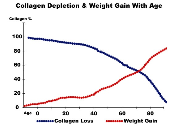collagenwtgainchart.jpg