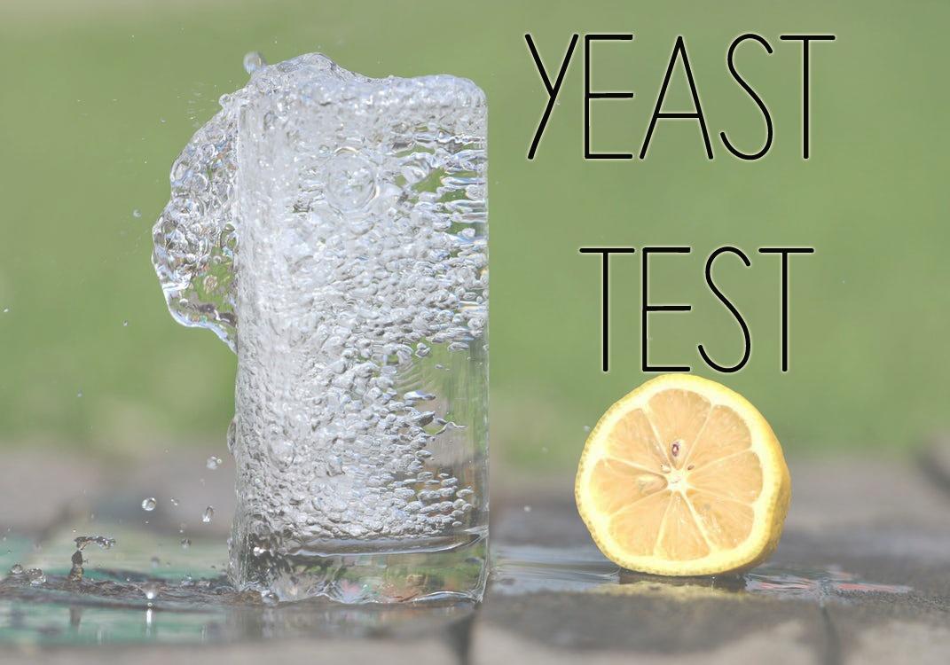 yeasttestfinal.jpg